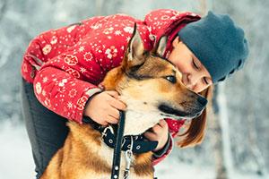 dog-in-snow